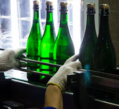Champagne Produce. Checking champagne quality in the vinery Royalty Free Stock Photography