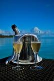 Champagne raffreddato Fotografia Stock Libera da Diritti