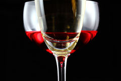 Champagne and red wine Stock Images