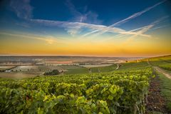 Champagne-Region in Frankreich Eine schöne Ansicht Stockfoto