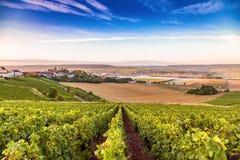 Champagne-Region in Frankreich Eine schöne Ansicht Stockfotos