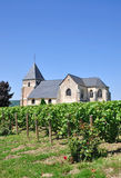 Champagne Region near Epernay,France Stock Image