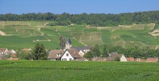 Champagne Region perto de Epernay, França Imagens de Stock Royalty Free