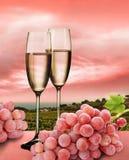 Champagne, rosafarbene Trauben und Weinberg Stockbilder