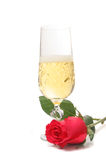 Champagne and rose Royalty Free Stock Photo