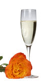 Champagne and Rose Stock Photo