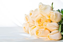 Champagne roses 2 Stock Image