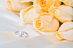 Champagne roses with rings 2. The champagne roses with pair rings on the cloth Stock Image