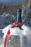 Champagne in sneeuw Stock Afbeelding