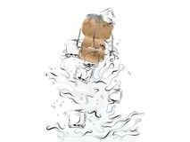 Champagne splash. With ice cubes and cork Stock Image
