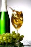 Champagne splash Royalty Free Stock Photos