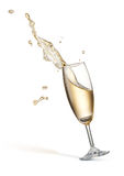 Champagne splash. Glass of splashing champagne isolated on white royalty free stock photo