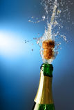 Champagne with splashes Royalty Free Stock Photos