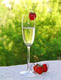 Champagne and strawberry Royalty Free Stock Photos