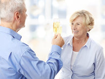 Champagne toast Stock Image