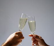 Champagne toast in sun Royalty Free Stock Photography