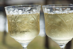 Glasses of champagne. Two iced glasses of champagne in ornate crystal stemmed glasses Royalty Free Stock Photos