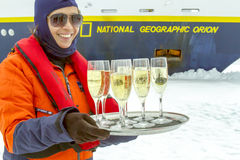 Champagne-toost, Antarctica Royalty-vrije Stock Fotografie
