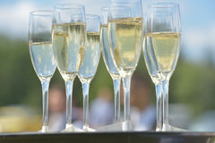 Champagne on a tray Royalty Free Stock Photography