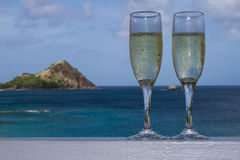 Champagne tropicale Images stock