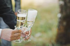 Champagne two bokal in hands Stock Images