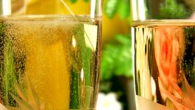 Champagne stock video