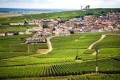 Champagne, vinhedo nos montes perto de Vernezay No fundo a planície com vinhedos france fotografia de stock