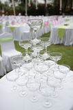 Champagne wedding Stock Images