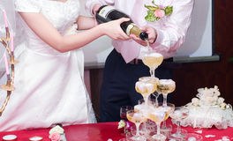 Champagne on the wedding. Newly-married couple pour the Champagne to celebrate together Royalty Free Stock Photos