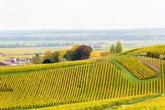 Champagne-Weinfelder während des Herbstes Stockfotos