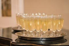Champagne welcoming glasses royalty free stock image