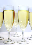 Champagne on a white background Stock Images