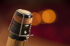 Champagne wine bottle cap Stock Images