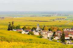 Champagne wine fields during autumn. Village of Oger. Royalty Free Stock Photography