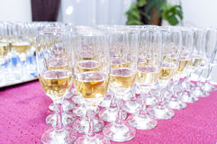 Champagne and Wine Glass. A wine glass is a type of glass stemware that is used to drink and taste wine royalty free stock images