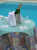 champagnedeltagare Fotografering för Bildbyråer