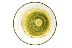 Champagneexponeringsglas med bubblor Royaltyfri Bild