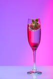 Champagneexponeringsglas med jordgubben, studioskott Royaltyfria Bilder