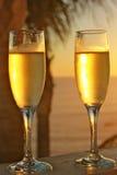 Champagneexponeringsglas på det vertikala formatet för solnedgång Royaltyfri Fotografi