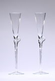 Champagneexponeringsglas tömmer Royaltyfria Foton