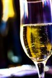 Champagneflaska med champagneexponeringsglas royaltyfri foto