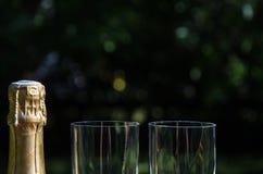 Champagneflaska med två exponeringsglas Royaltyfri Foto