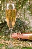champagnejulprydnadar Arkivfoton