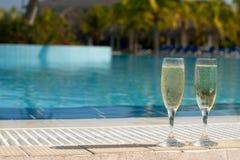 champagnepöl royaltyfri fotografi