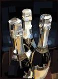Champagner瓶 免版税库存照片