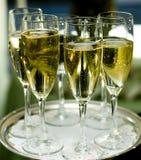 champaign Στοκ Εικόνες