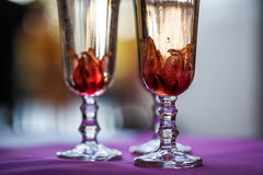 Champaign glasses Stock Photography