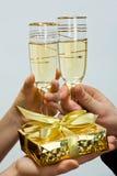 champaigngåvatumblers två royaltyfria foton