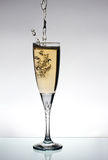 champange γυαλί στοκ φωτογραφίες με δικαίωμα ελεύθερης χρήσης