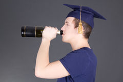 Champanhe bebendo do homem da graduação sobre o cinza fotos de stock royalty free